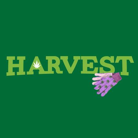 Harvest-450x450